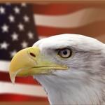 米国ETFをメインにするためには?
